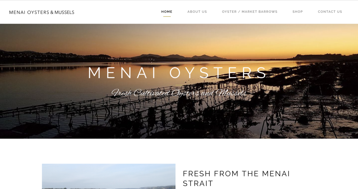 Menai Oysters screenshot